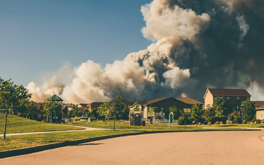 home wildfire